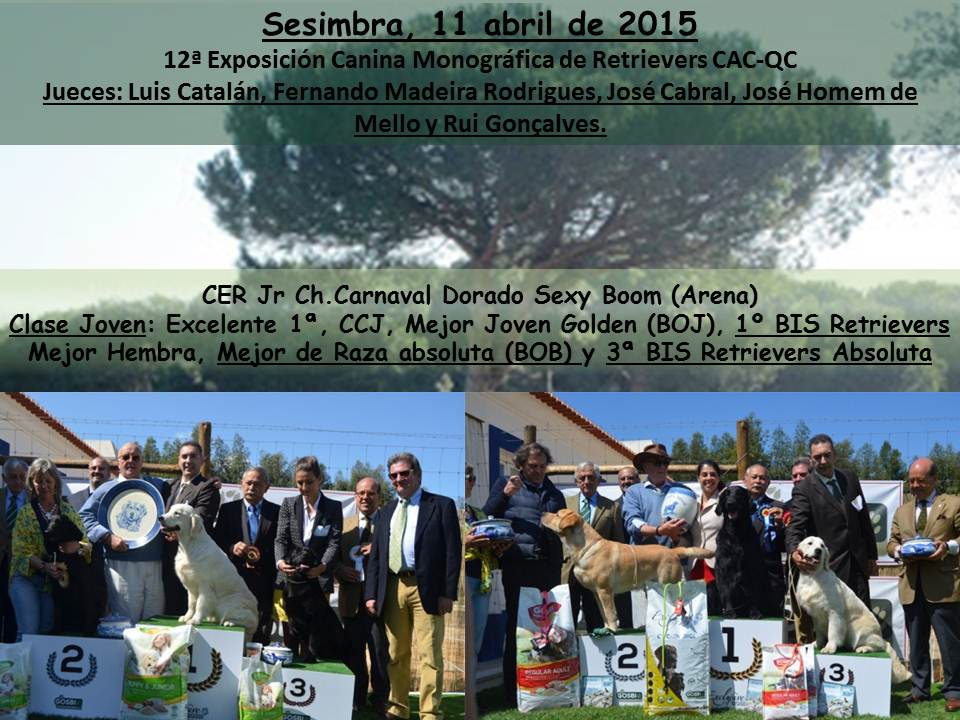 noticiassesimbra2015